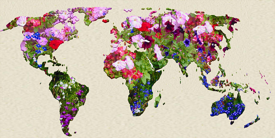 World Map made out of flowers - Future Views Magazine